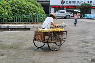Local style, Yangshou