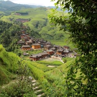Talot riisipellon keskellä