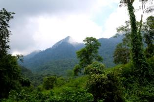 Sumuisten vuorten juurella