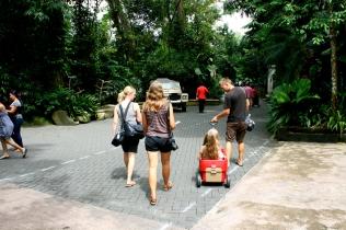 Ja matka jatkuu eläintarhassa
