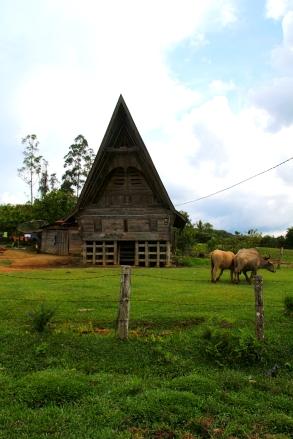 Paikallinen Batak-talo