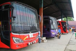 Bussilla Medanista Dumaihin