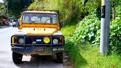 cameron_highlands_auto37