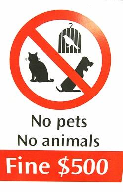 Ei mitään eläimiä