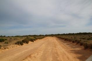 Länsi-Australian rajan tuntumassa