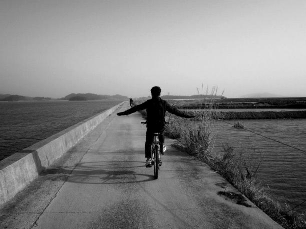 Lentäen vai pyörällä? kuva: Tae-Sang