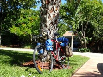 Laurin pyörä Floridassa