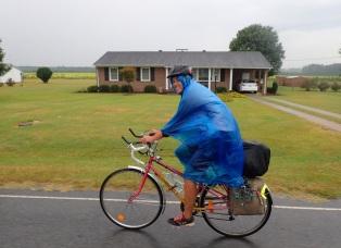 Sadeviitalla sateeseen