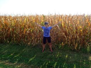 Maissipelto ja minä
