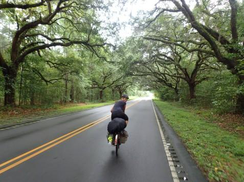Upeita puita matkalla