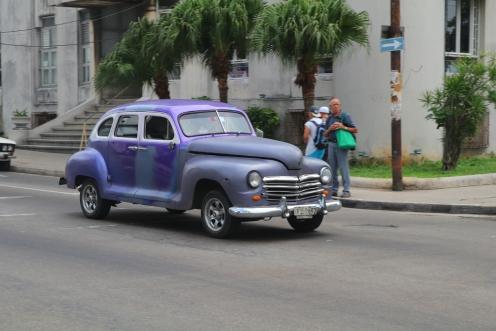 Violetti komistus