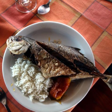 Kokonainen kuubalainen kala