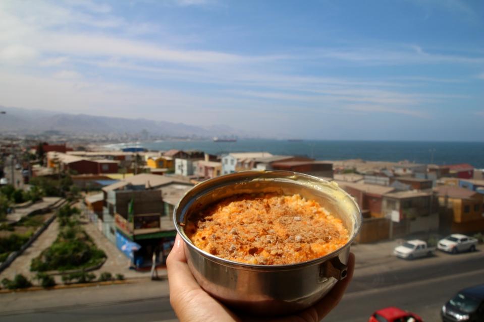 Antofagasta ja suomalainen porkkanalaatikko