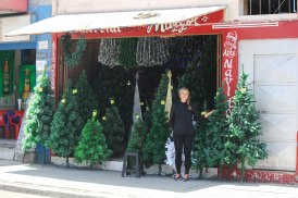 Joulupuu on rakennettu, marraskuu on ovella