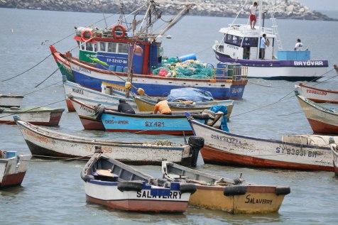Salaverryn kalastusaluksia