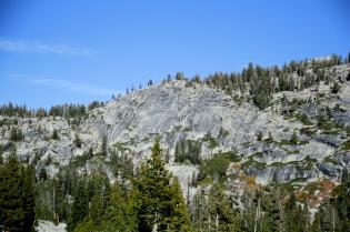 Mäntymetsää ja kalliota