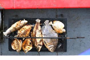 Fisut grillissä